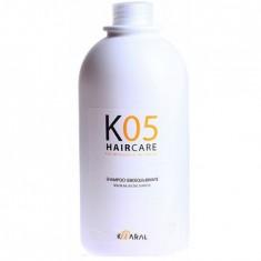 Kaaral Шампунь для восстановления баланса секреции сальных желез 1000мл