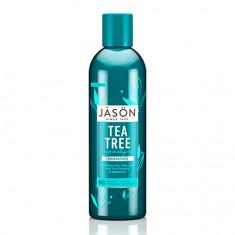 JASON, Шампунь Tea Tree Normalizing, 517 мл
