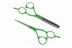 """DEWAL PROFESSIONAL Набор парикмахерских ножниц 5,5"""", зеленые в черном чехле, 2 шт"""
