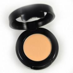 Корректор восковой антисерн Make-Up Atelier Paris 1Y C/C1Y бледно-золотистый 2 гр