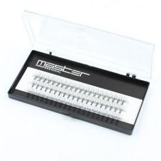 Master Professional, Пучки ресниц в коробке, 13 мм, изгиб C